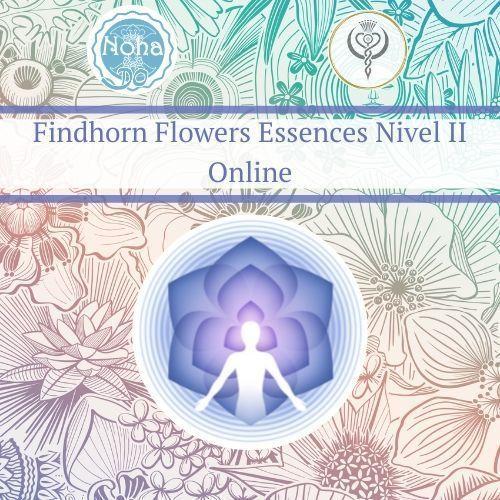 Accredited training of Flower Essences Findhorn II online