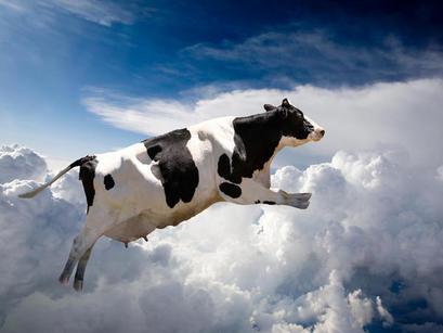 cuando las vacas vuelen espagnol pas à pas