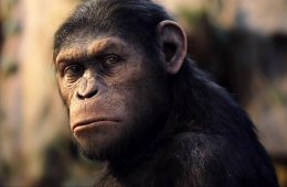caesar-rise-of-the-planet-of-the-apes-2011-02