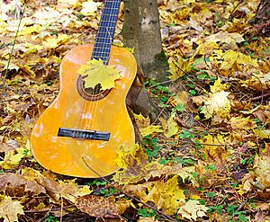 music-guitar-autumn-leaves-forest