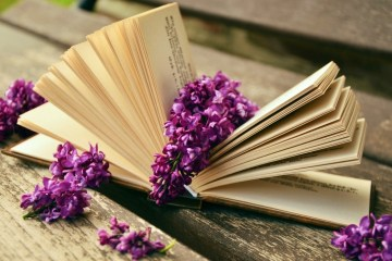 book-read-relax-lilac-bank-old-book-pages-rest