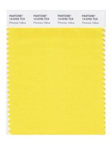 amarelo-primrose