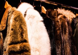 faux fur coat vegan friendly