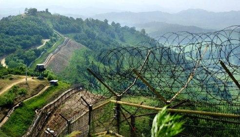 Zona desmilitarizada en la frontera que divide las dos Coreas.