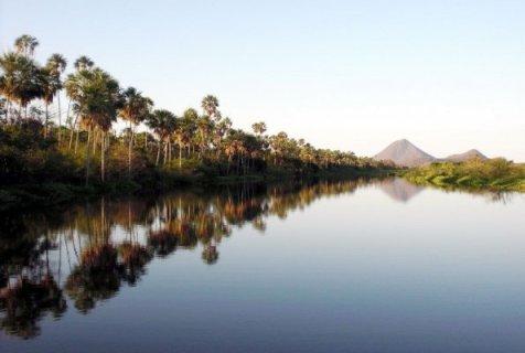 el-alto-paraguay-es-absolutamente-fantastico-tiene-la-biodiversidad-del-gran-pantanal-con-impresi