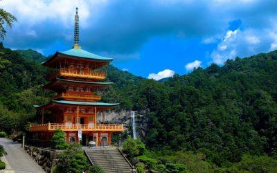 Omotenashi: Paz en Acción