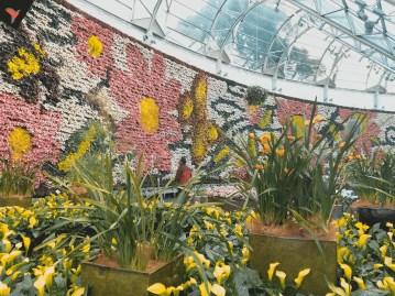 Exposicion Jardin botanico