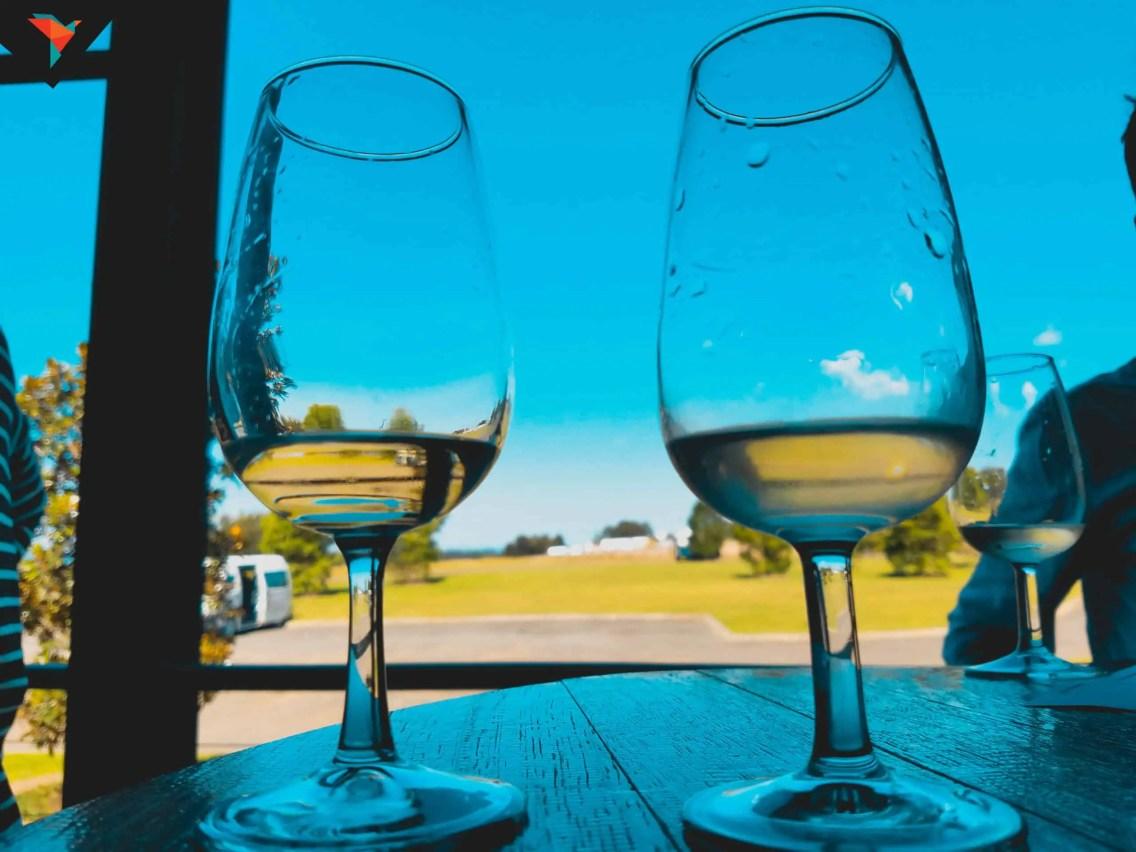 Cata de vinos en Hunter Valley