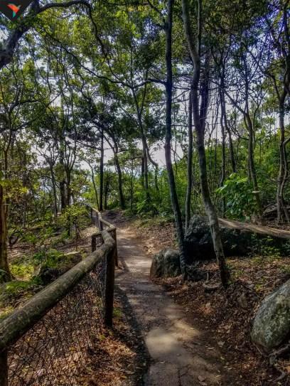 Parque Nacional Burleigh Heads