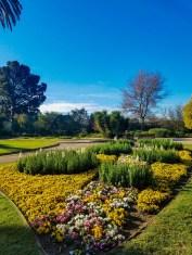 Flores en el Jardín Botánico de Melbourne