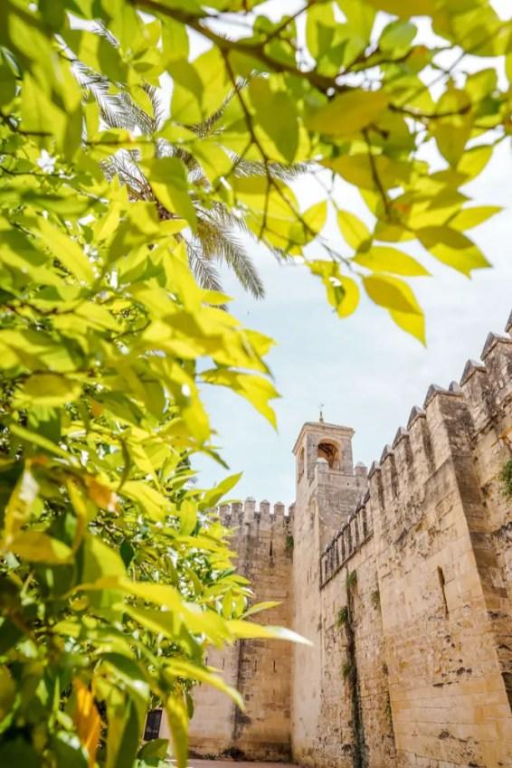 Alcázar y sus jardines. Que ver en Cordoba