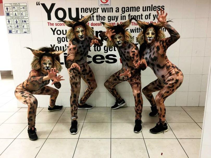 animales, animales, vivientes, personajes, body paint, maquillaje, animales méxico
