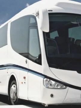 autobuses para despedidas