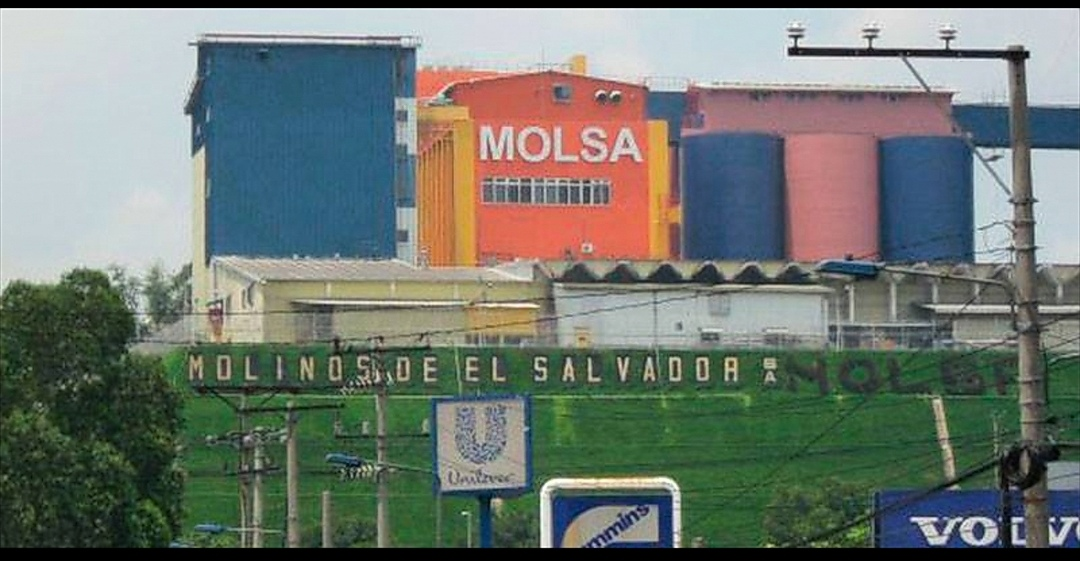 Honduras bloquea entrada de harina de MOLSA por estar contaminada de  gorgojos - Periodismo responsable - Espectador