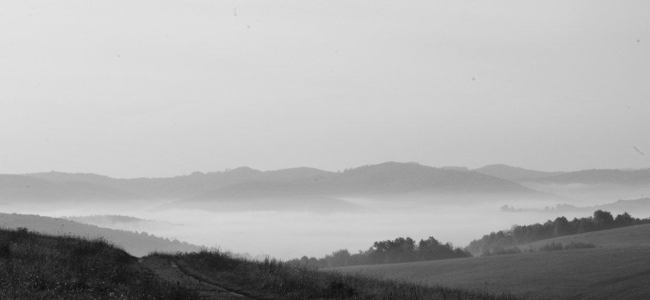 Stropkovská brázda v hmle