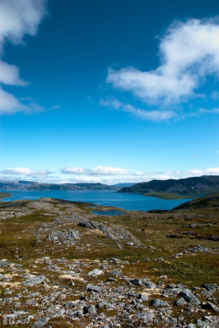 Bølefjorden