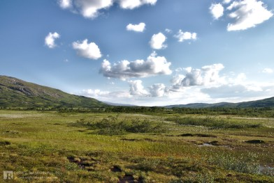 An hour walk from Orrekvatnet
