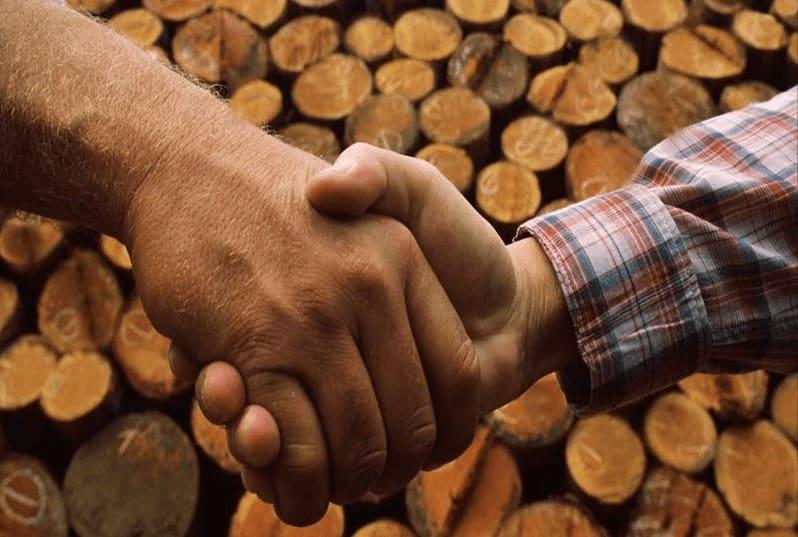 riscaldamento a legna - Bruciare bene la legna da ardere nella stufa e il contenuto energetico del legno 2