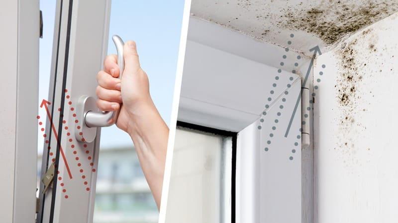 comprendere la muffa - Eliminare la muffa in casa senza isolamento e senza VMC 6