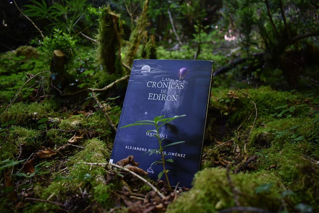 En este momento estás viendo Las crónicas de Ediron.