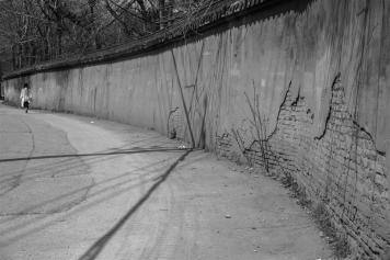 espinosa-art-photo_along-the-wall