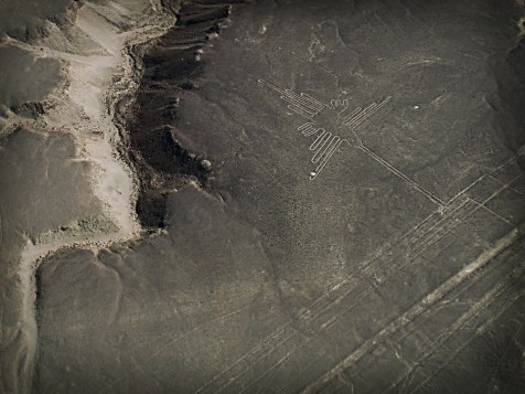 Linee di Nazca, Colibrì, Perù
