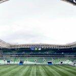 ESPORTESNET transmite Palmeiras X Sport pelo Brasileirão Série A