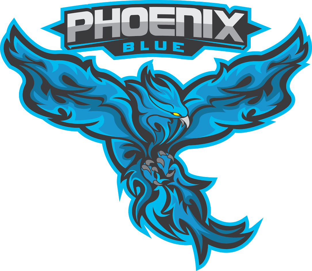Welcome To Overwatch Sverige And Phoenix Blue Esport United