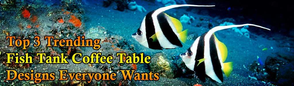 top 3 unique fish tank coffee tables