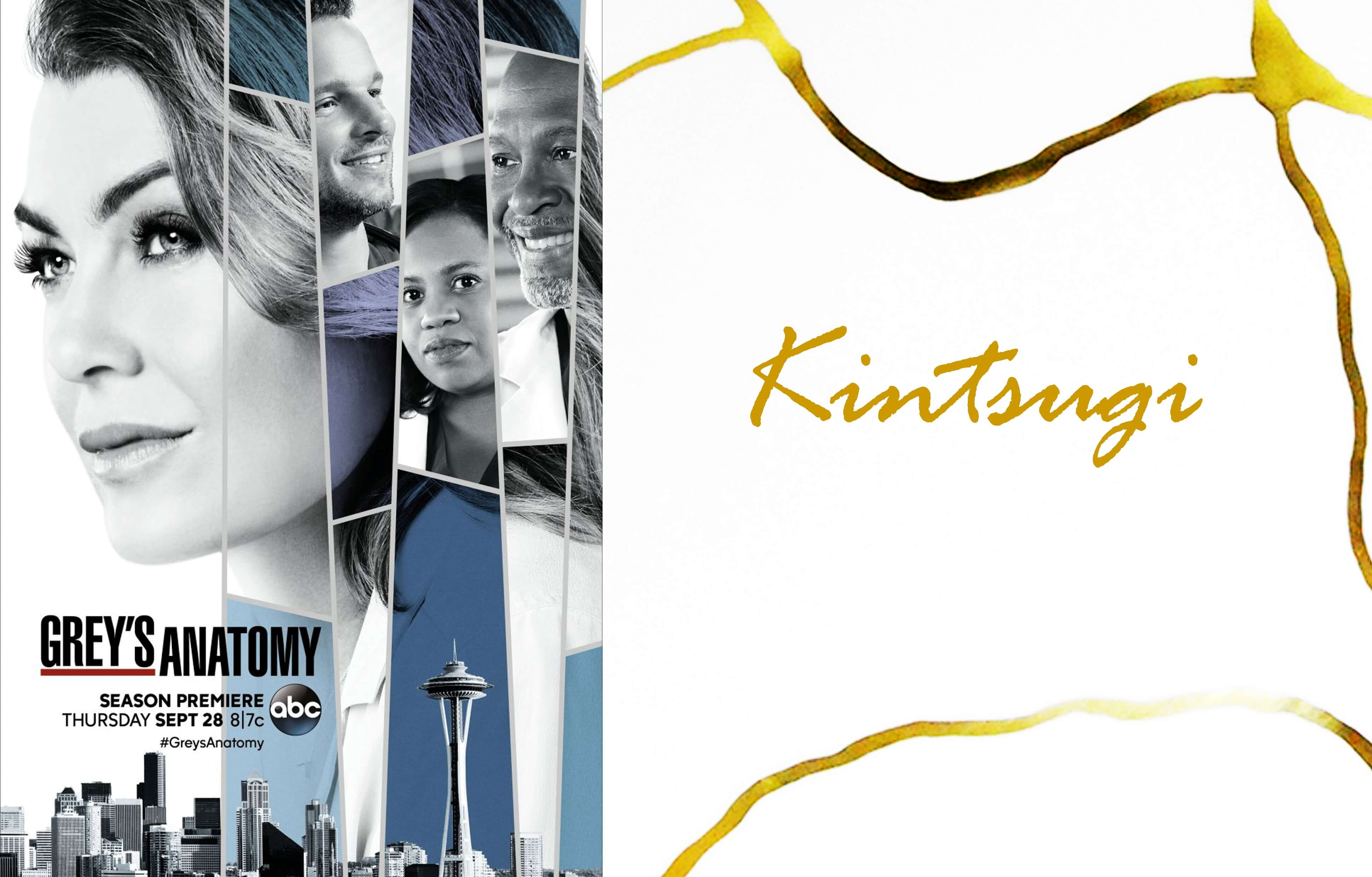 Greys Anatomy Also Speaks Of Kintsugi The Art Of Repairing Wounds