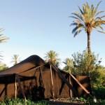 Tente du Camp de l'Oasis