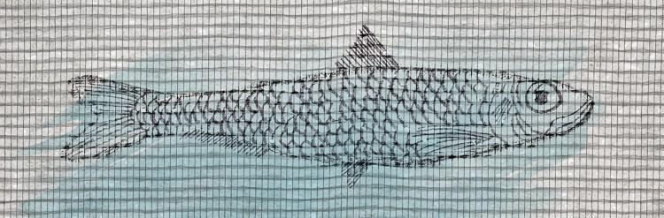 sardine imprimée sur toile