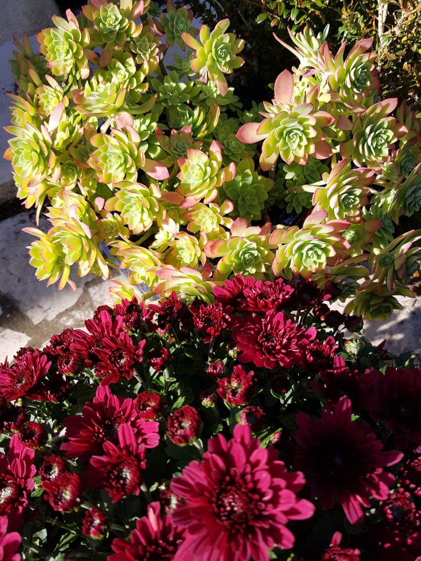 Décoration entrée automne extérieur