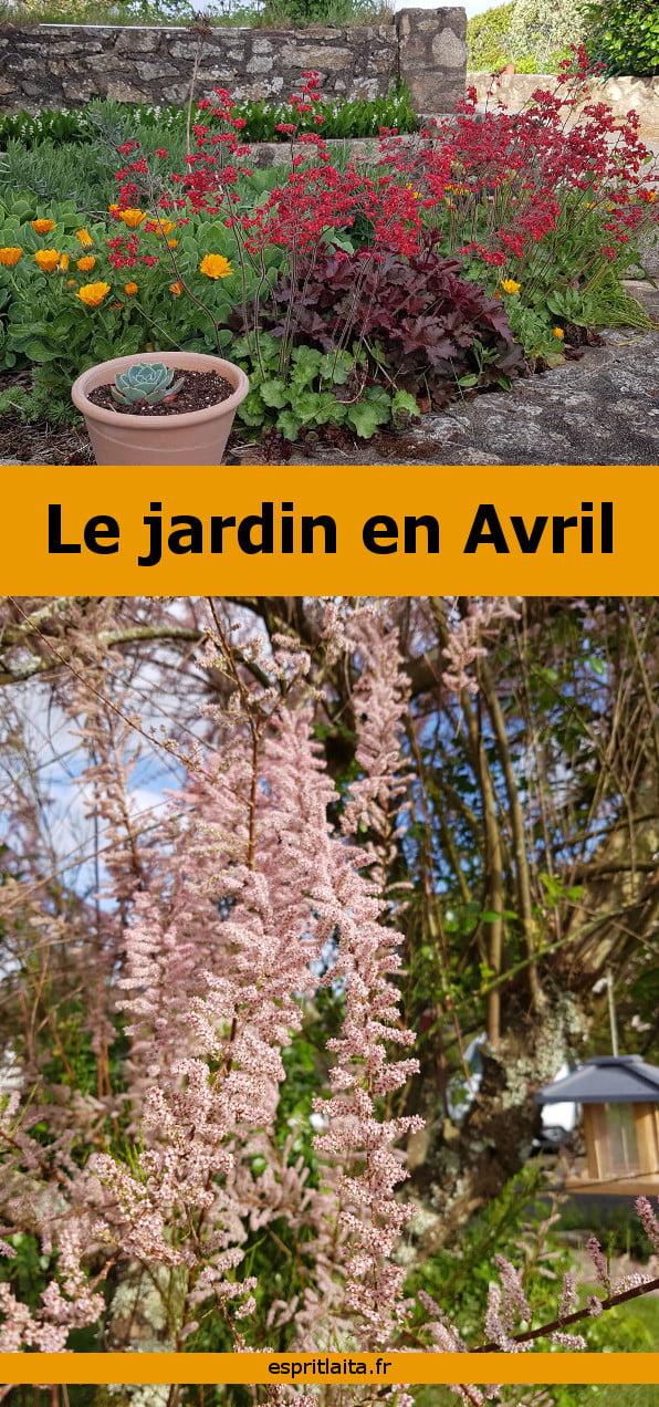 petit tour du jardin en avril