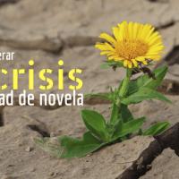 Cómo superar la crisis de mitad de novela