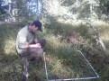 Chase Hartnett at his field site at Stone Barns.