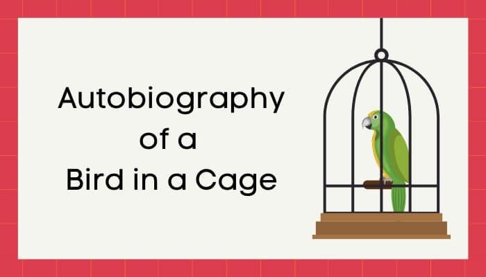 पिंजड़े में बंद पंछी की आत्मकथा हिंदी निबंध - Autobiography of Bird in Cage Essay in Hindi