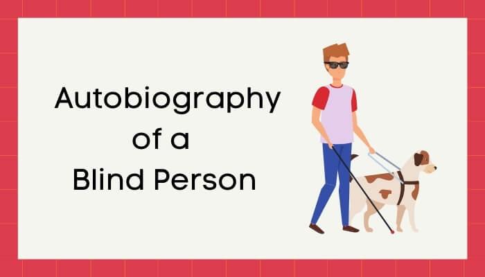 एक अंधा बोलता है हिंदी निबंध - Autobiography of Blind Person Essay in Hindi