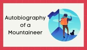 एक पर्वतारोहक की आत्मकथा हिंदी निबंध - Autobiography of Mountaineer Essay in Hindi
