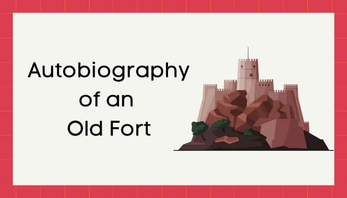 एक जीर्ण किले की आत्मकथा हिंदी निबंध - Autobiography of Old Fort Essay in Hindi