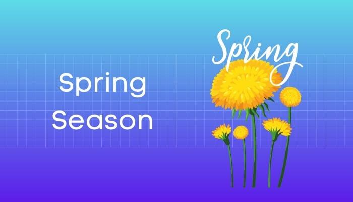 ऋतुराज वसंत हिंदी निबंध - Spring Season Essay in Hindi