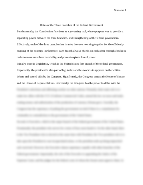 Government Essay Roles Of The Three Branches Of The Federal
