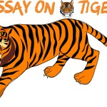 ESSAY ON TIGER IN ENGLISH 200, 500 AND 1000 WORDS