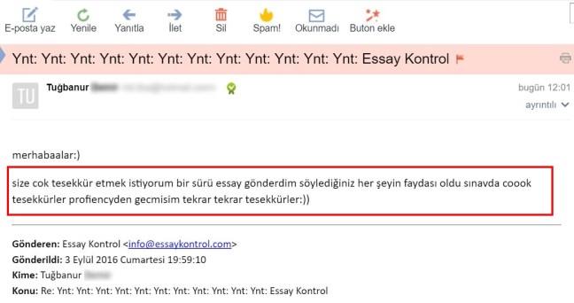 essay-kontrol