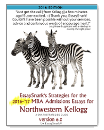 Northwestern Kellogg School of Management MBA Essay 2
