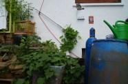 Jeder kann mithelfen: Gießkanne, 3 volle Regentonnen, Schäufelchen, Schilder, Saatgut...alles vor Ort!