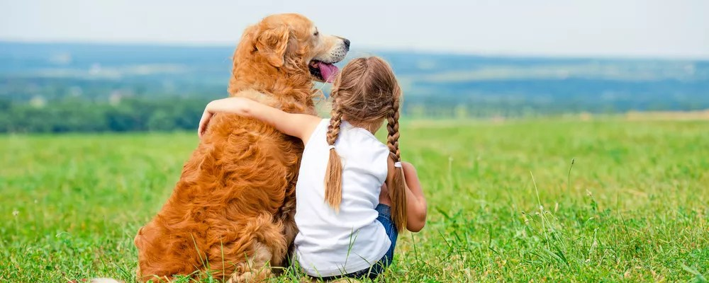 Little girl hugging golden retriever in field