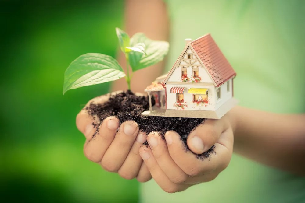 Going Green 101: How to Live Green at Home via @extraspace
