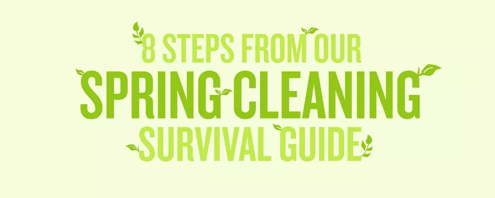 """Graphic titled """"8 Steps from Our Spring Cleaning Survival Guide"""""""