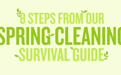 8 Tips & Tricks to Help You Survive Spring Cleaning (Infographic)